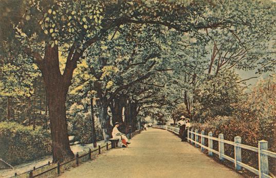 Oberwall. 1915 gelaufen