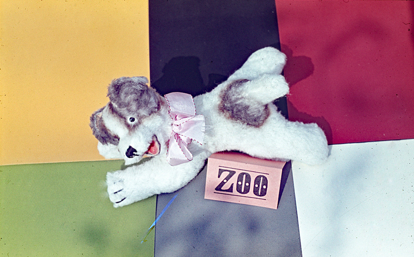 021-zoo-text