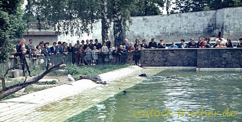 101-zoo